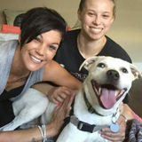 Available: Knowledgeable Pet Care Provider in Schiller Park, Illinois