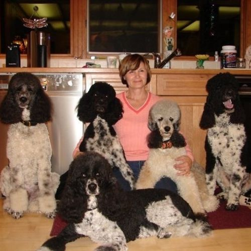 Pet Care Provider Marie Roberts's Profile Picture