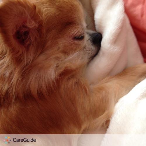 Pet Care Job Marissa Knepper's Profile Picture