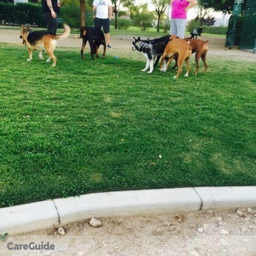 Pet Care Provider Shel Corpuz's Profile Picture
