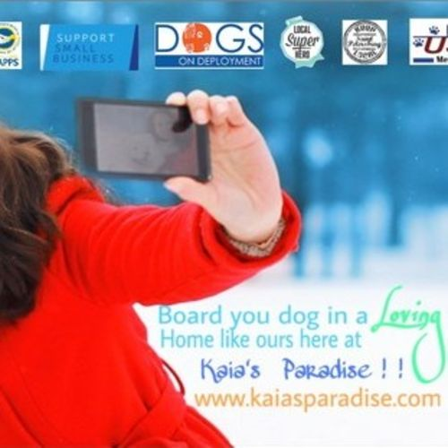 Pet Care Provider Kaia's Paradise Gallery Image 3