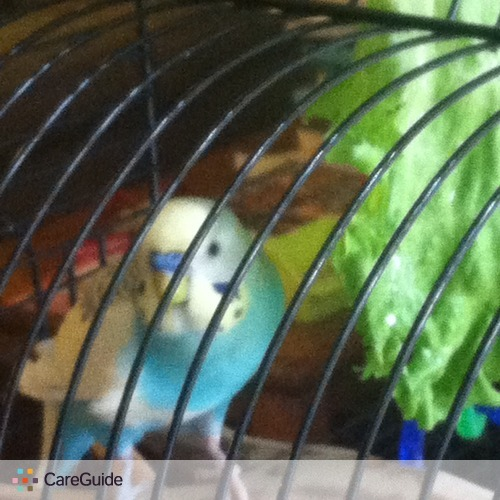 Pet Care Provider Lesia Tustaniwskyj's Profile Picture