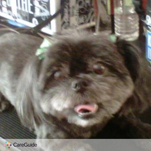 Pet Care Provider Valerie Brown's Profile Picture