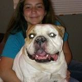 Lauralee Valladares, Dedicated Pet Sitter for Your Home. I currently have a free schedule.