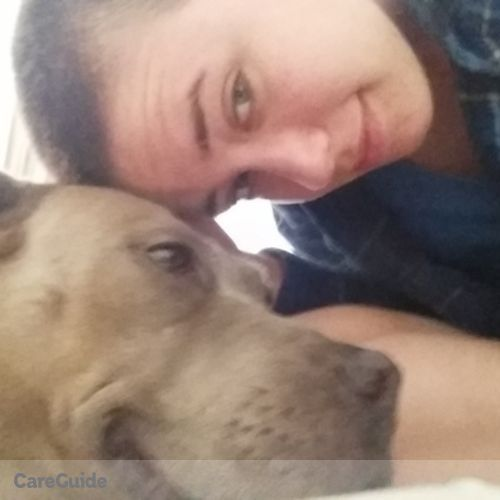 Pet Care Provider Angelina Lewis's Profile Picture