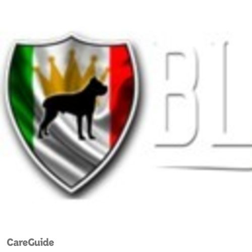 Pet Care Provider Blue Kings Cane Corso's Profile Picture