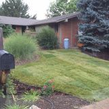 General Handyman/ Landscaping Services (Free Estimates!)