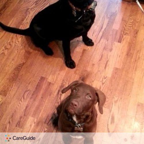 Pet Care Provider Brianna Pranger's Profile Picture