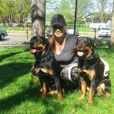 Nanny, Pet Care, Homework Supervision in Hawkesbury