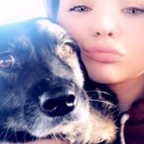 Pet Care Provider Sierra K's Profile Picture