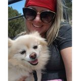 Interested In Park City (and surrounding areas) Pet Sitter, Utah Jobs