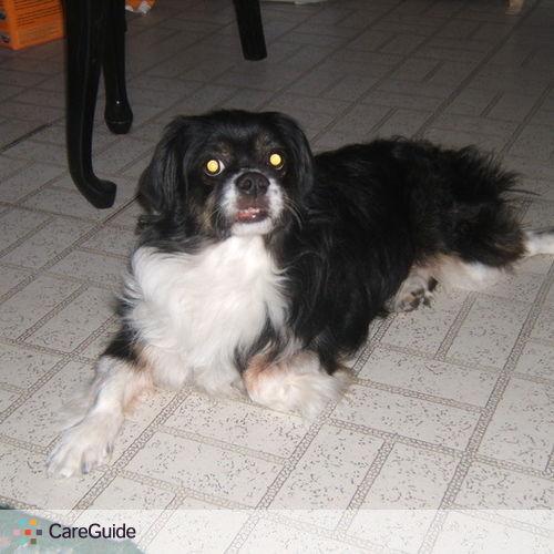 Pet Care Provider Collette Aloi's Profile Picture