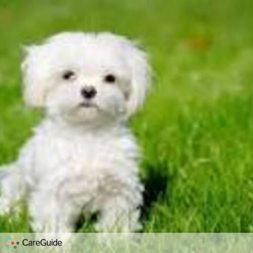 Pet Care Provider Roberto Romero's Profile Picture