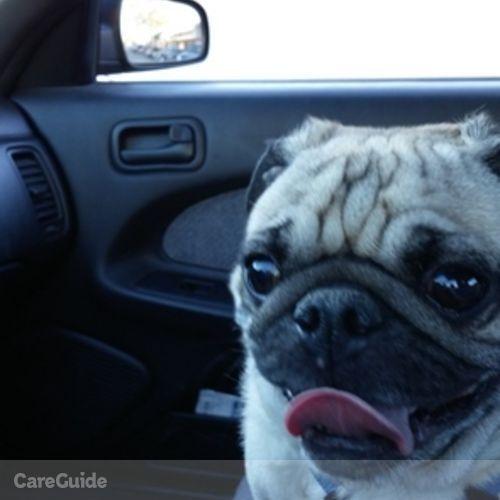 Pet Care Provider Natasha Lewis's Profile Picture