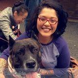 Dog Walker, Pet Sitter in Kearneysville