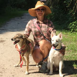 Loving Pet Sitter in Fernandina Beach, Florida