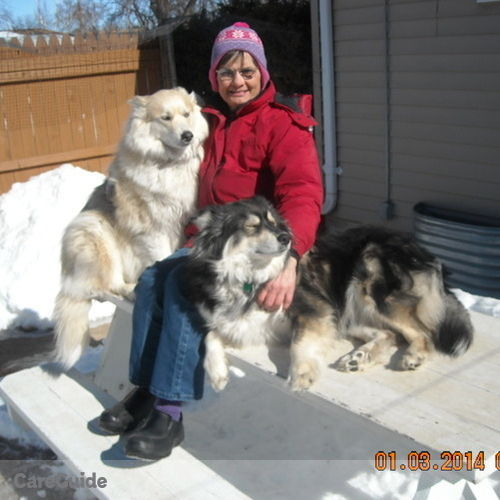 Pet Care Provider Sandra Gebhart's Profile Picture