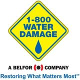 Water Damage Professionals