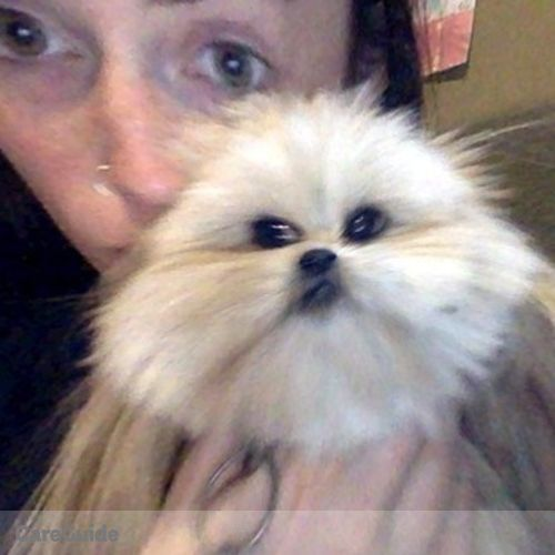 Pet Care Provider Campion Cottrell-McDermott's Profile Picture