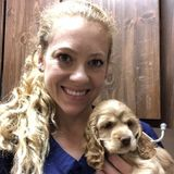 Experienced Veterinary Professional working through college.