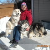 Dog Walker, Pet Sitter in Menasha