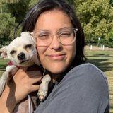 Flexible Pet Walker in Granada Hills
