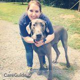 Dog Walker, Pet Sitter in Chantilly