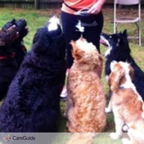 Pet Care Provider Kelly M's Profile Picture