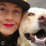 Dog Walker, Pet Sitter in Costa Mesa