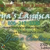 Losoya Landscaping We will beat ANY price by 20%! 100% satisfaction guarantee!
