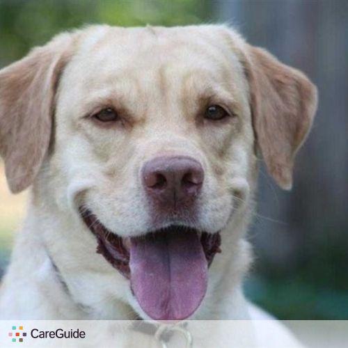 Pet Care Provider Alan W's Profile Picture