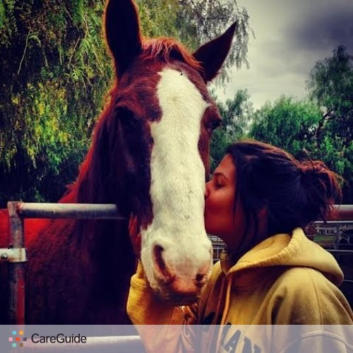 Pet Care Provider Robyn E's Profile Picture