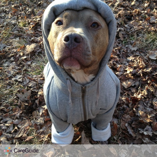 Pet Care Provider bruce cooper's Profile Picture