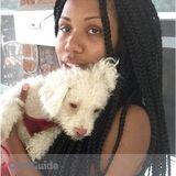 Dog Walker, Pet Sitter in Staten Island