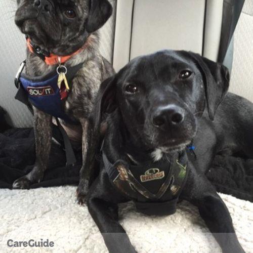 Pet Care Job Pauline Law's Profile Picture