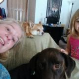 Looking For Suamico Babysitter/dog sitter services Wisconsin Jobs