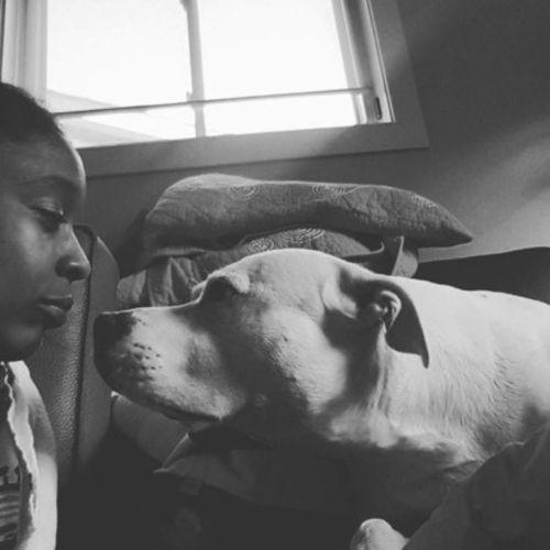 Pet Care Provider Jene H Gallery Image 1