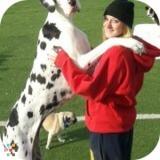 Dog Walker, Pet Sitter in Huntersville