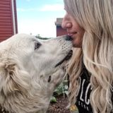Airdrie Pet Lover Seeking to Help Families with their Pets Needs