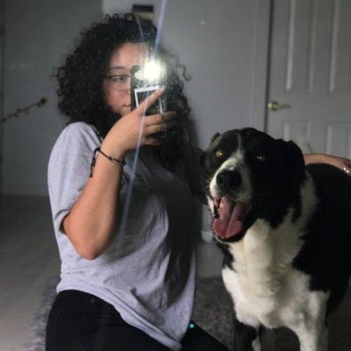 Pet Care Provider Darian V's Profile Picture