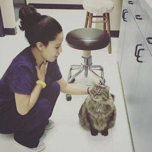 Pet Care Provider Dorothy Leon's Profile Picture