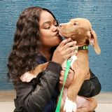 Searching for Brooklyn Pet Sitter Opportunity, I have years of experience with animals, Medical, Grooming.