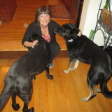 Mature, trustworthy woman with flexible PT job, who will love and care for your pets for you while you are away!