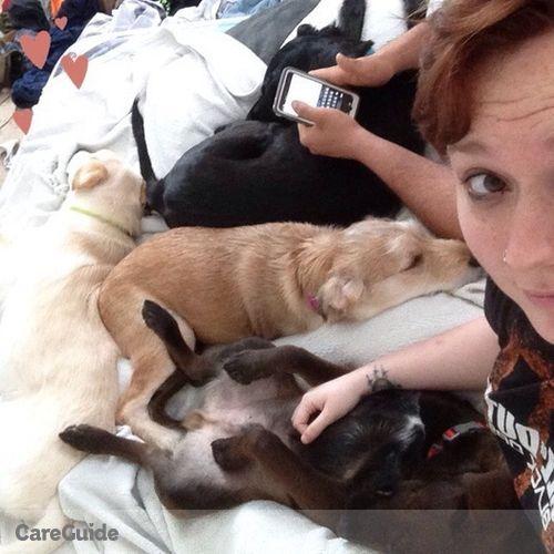 Pet Care Job Brittany Cosentino's Profile Picture