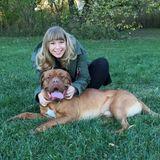 Dog Walker, Pet Sitter in Berwyn