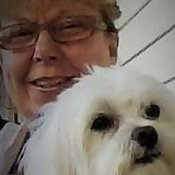 I have always loved and cared for creatues. I am retired and bondable. I have a lot of experience with pets and wild animals.