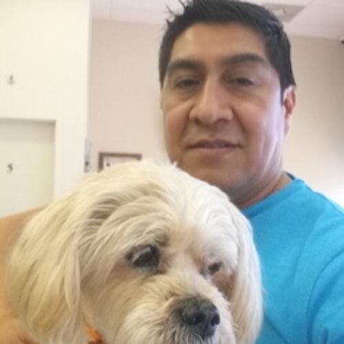 Pet Care Job Jerry J's Profile Picture