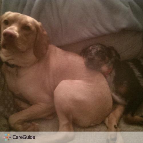 Pet Care Provider Mary Smith's Profile Picture