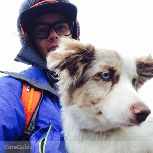 Pet Care Provider Quinlin K's Profile Picture