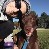 Disciplined Pet Care Provider in Lakewood